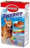 SANAL ENERGY 100g/100tbl.
