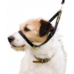 Canny Collar výcvikový obojek