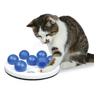 Hračky pro kočky