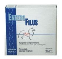 ICF Enterofilus 12x10ml